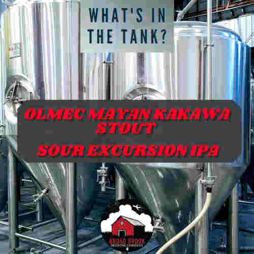 What's in the Tank? – Coming December 30
